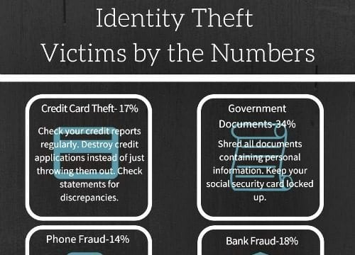 Identity Theft Victim Numbers Infographic